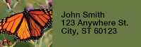 Monarch Butterflies Rectangle Address Labels | LRRANI-38