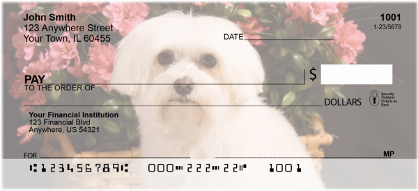 Maltese Personal Checks | DOG-103